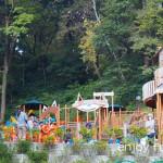 鯖江のシンボル西山公園の冒険の森「パンダランド」