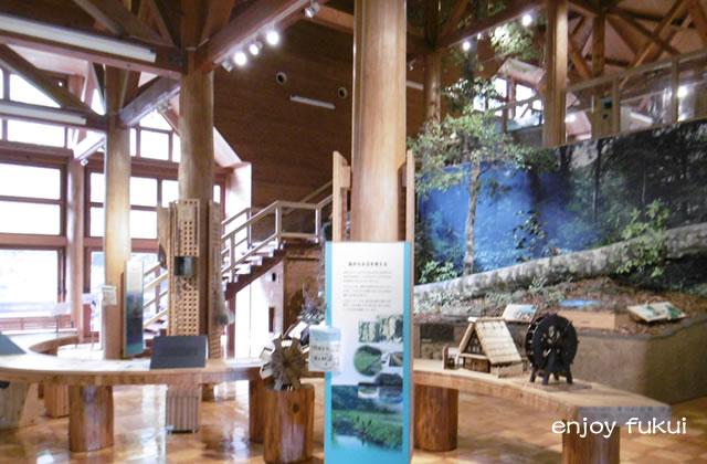 自然保護センター