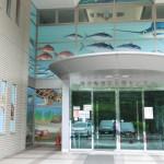 若狭の海をまるごと楽しもう「福井県海浜自然センター」
