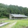 """トンボの楽園!中池見湿地"""" 人と自然のふれあいの里"""""""
