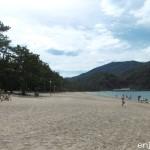 日本三大松原で海水浴!「気比の松原海水浴場」